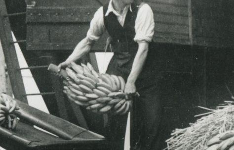 Alf Williams
